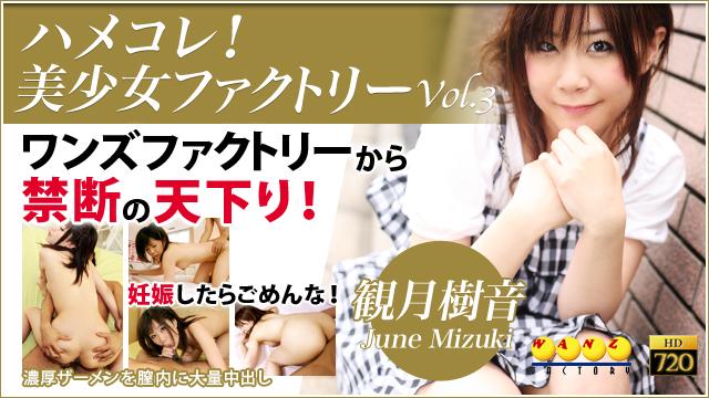 ハメコレ!美少女ファクトリー Vol.3 観月樹音